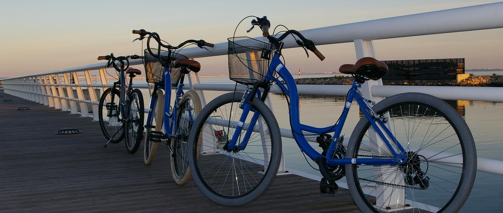bicicletas_IMGP0014